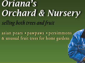 Oriana's Orchard and Nursery selling both trees and fruit